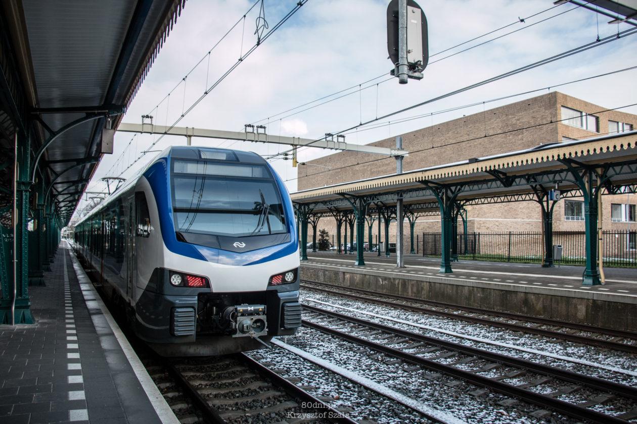 Pociąg Nederlandse Spoorwegen - Kolei Holenderskich