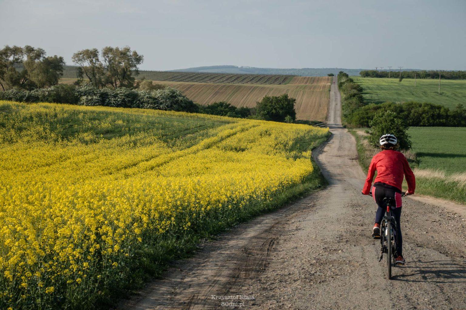 Ukształtowanie terenu nie zawsze sprzyja rowerzystom. Sprzyja za to robieniu zdjęć!
