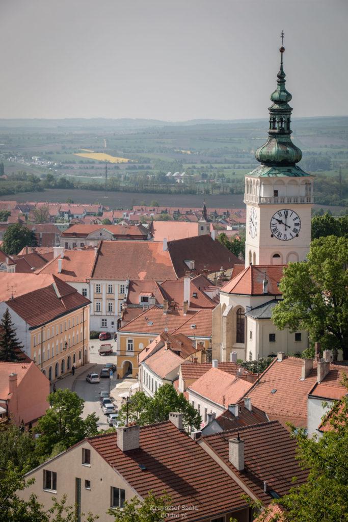 Widok z Koziego Hradku na kościół św. Wacława w Mikulovie.