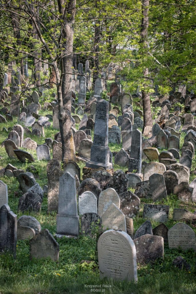 Cmentarz Żydowski w Mikulovie. Jest to największy tego typu obiekt na Morawach.