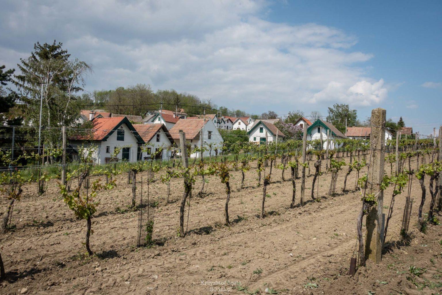 Galgenberg – winna wioska po austriackiej stronie granicy.