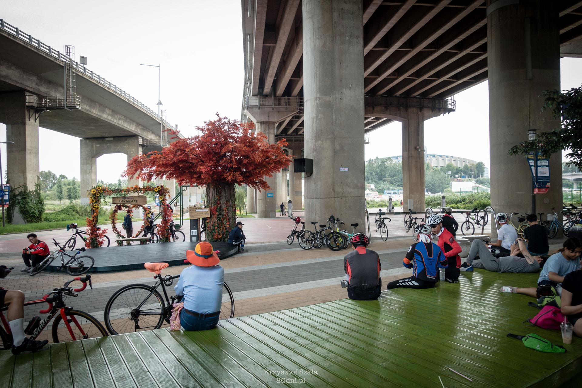 Jedno z miejsc odpoczynkowych dla rowerzystów.